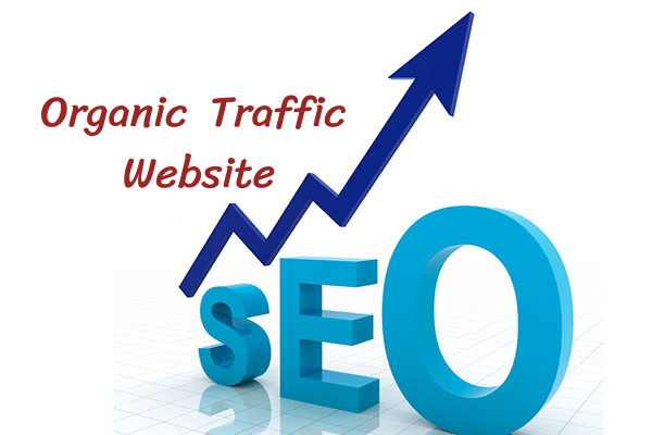 Organic-Traffic-Website